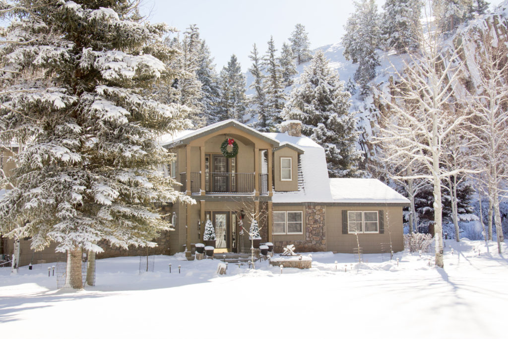 white winter view of the bed and breakfast with snow frosted trees