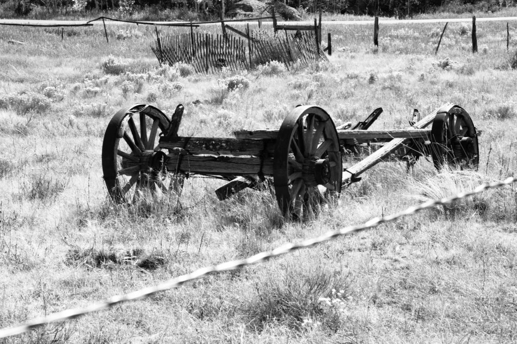 Wagon in field at Million Ranch