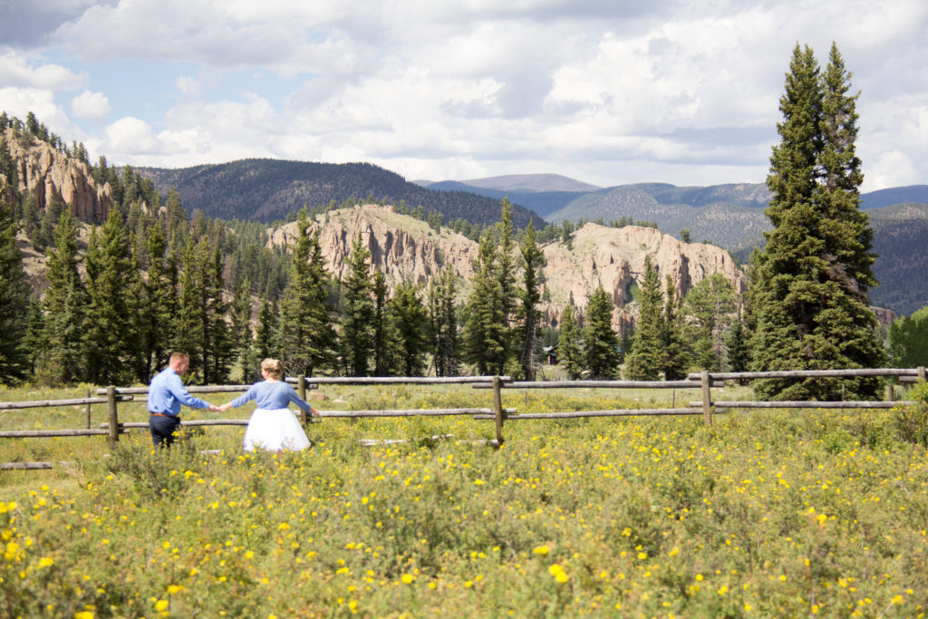 bride and groom walking through field of yellow flowers below cliffs in South Fork Colorado