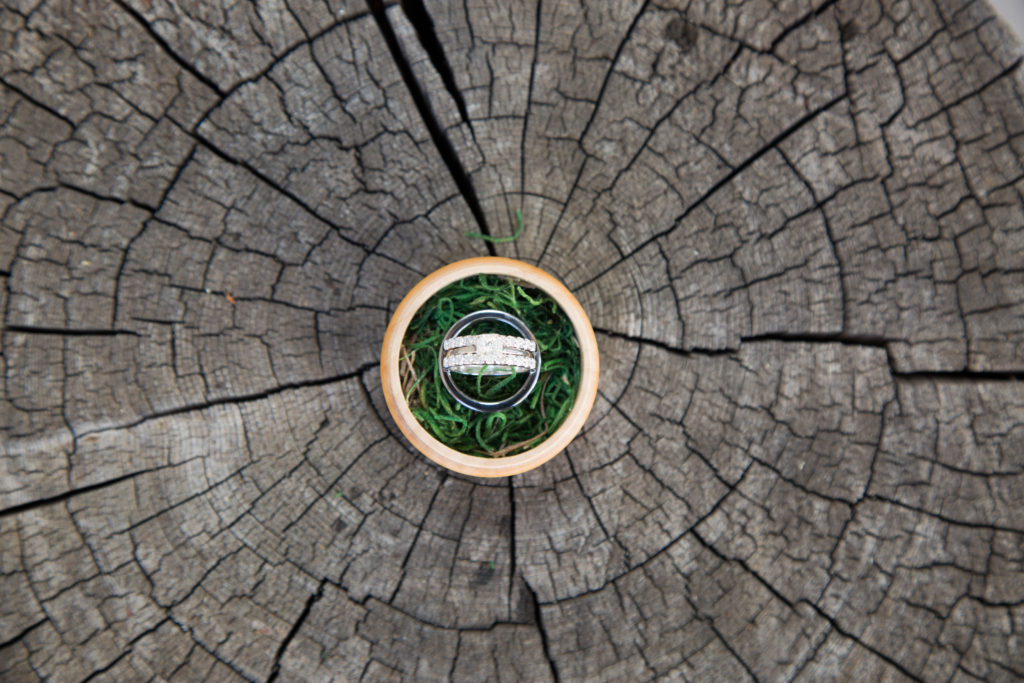 Wedding ring in a circle box atop a cracked wooden stump