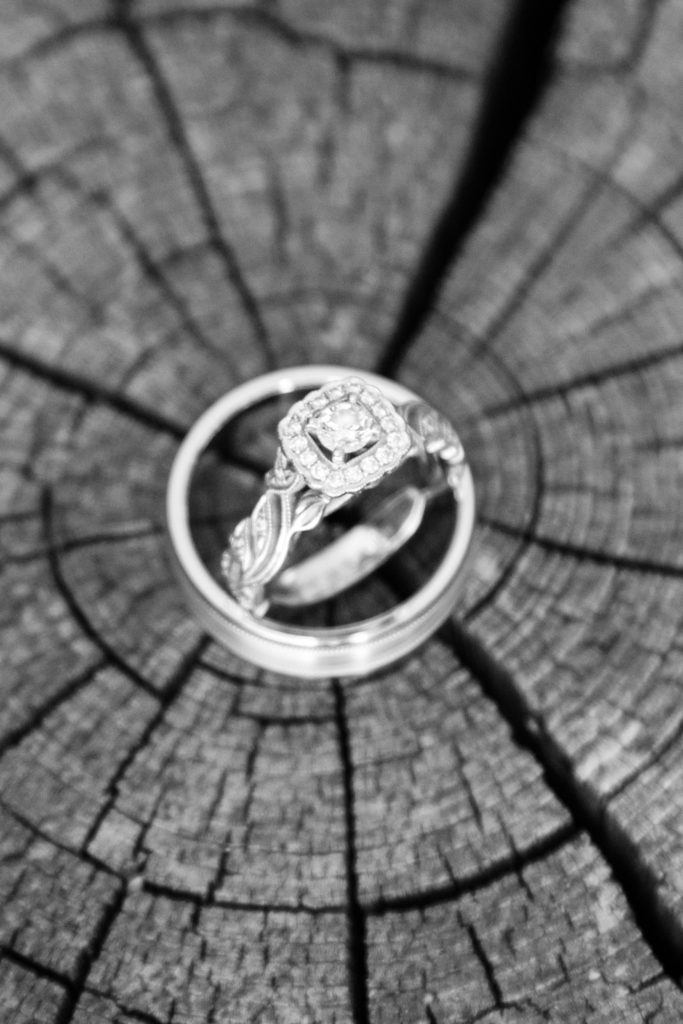 wedding rings sitting on cracked log